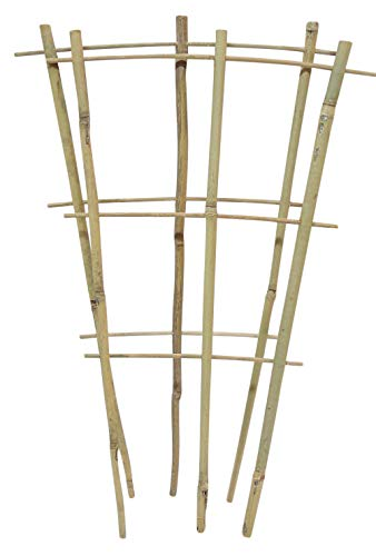 Natural Color Bamboo Trellis 18 inches Tall - Quantity 2