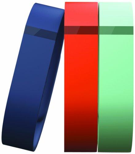 Fitbit Flex Accessory Pack Large