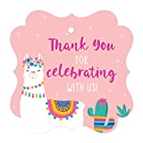 Andaz Press Peach Pink Llama and Cactus Girls Baby Shower Party, Fancy Frame Gift Tags, Thank You for Celebrating with US, 24-Pack, Llama Alpaca Bohemian Themed Decor
