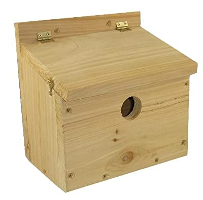 Starling Box - Bird Box - Cedar by LEEWAY WOODWORK