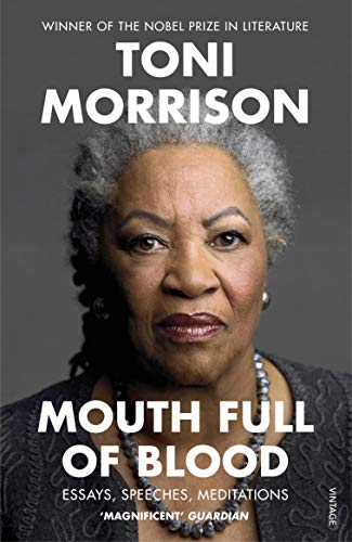 Mouth Full of Blood: Essays, Speeches, Meditations (English Edition)