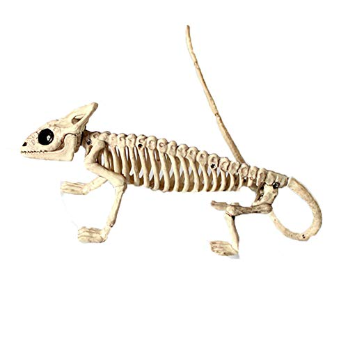 LLQZX Halloween Frosch Eidechse Skelett Modell, Halloween Horror Material PP Tierskelett Dekoration Horror Zubehör Innendekoration,Lizard