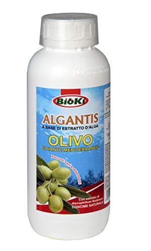 Antika Officina Botanika ALGANTIS OLIVO, Concime energizzante con Boro e Ascophillum Nodosum per Olivo e Piante Mediterranee, flacone da 1 kg