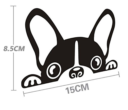 Vinilo autoadhesivo SKS Distribution con diseño de adorable cachorro de perro asomándose, ideal para carrocería y ventanillas del coche