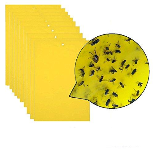 Sayla Gelbsticker Trauermücken 20 Stücke, Klebrige Insektenfallen, Beidseitig Fliegenfänger Sticker für Weiße Fliegen, Blattläuse, Blatt Bergmann, Motten andere Insekten,20x15cm (Gelb)