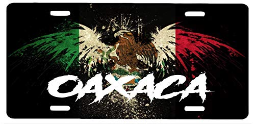 Oaxaca Mexico Aluminum License Plate Sign Placa 6' x 12'