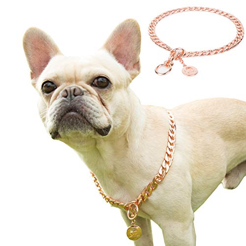 JYHY Stainless Steel P Chock Metal Chain Dog Necklace Collars Walking Training Pet Supplies for Small Medium Large Dogs/RG-45cm