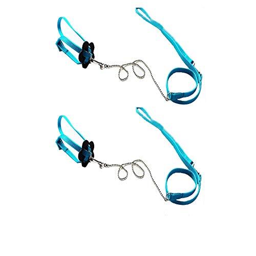 Bello Luna 2Pcs Adjustable Lizard Leash and Parrot Harness Leash - Blue