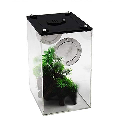 Suppemie Reptilienbox Terrarium Transportbox Faunarium Kunststoffterrarium Insektenbox Panorama Snake Spider Lizard Scorpion Acryl Fütterungsbox, Einfach Zu Bedienen