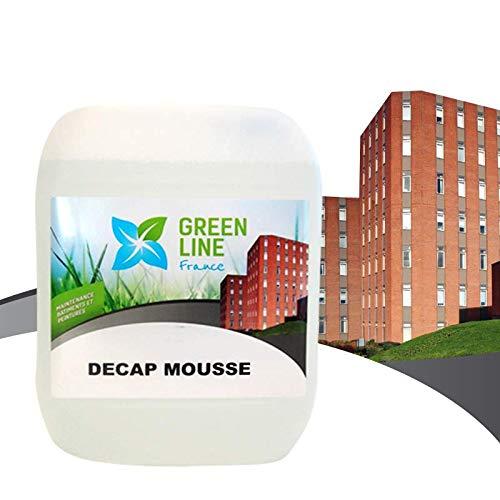 Green Line Frankreich–Decap Schaumstoff Kanister 5L démoussant DACHDECKEN, Fassaden, Terrassen, Sehr Konzentrat, starke Remanenz 2Jahre Minimum