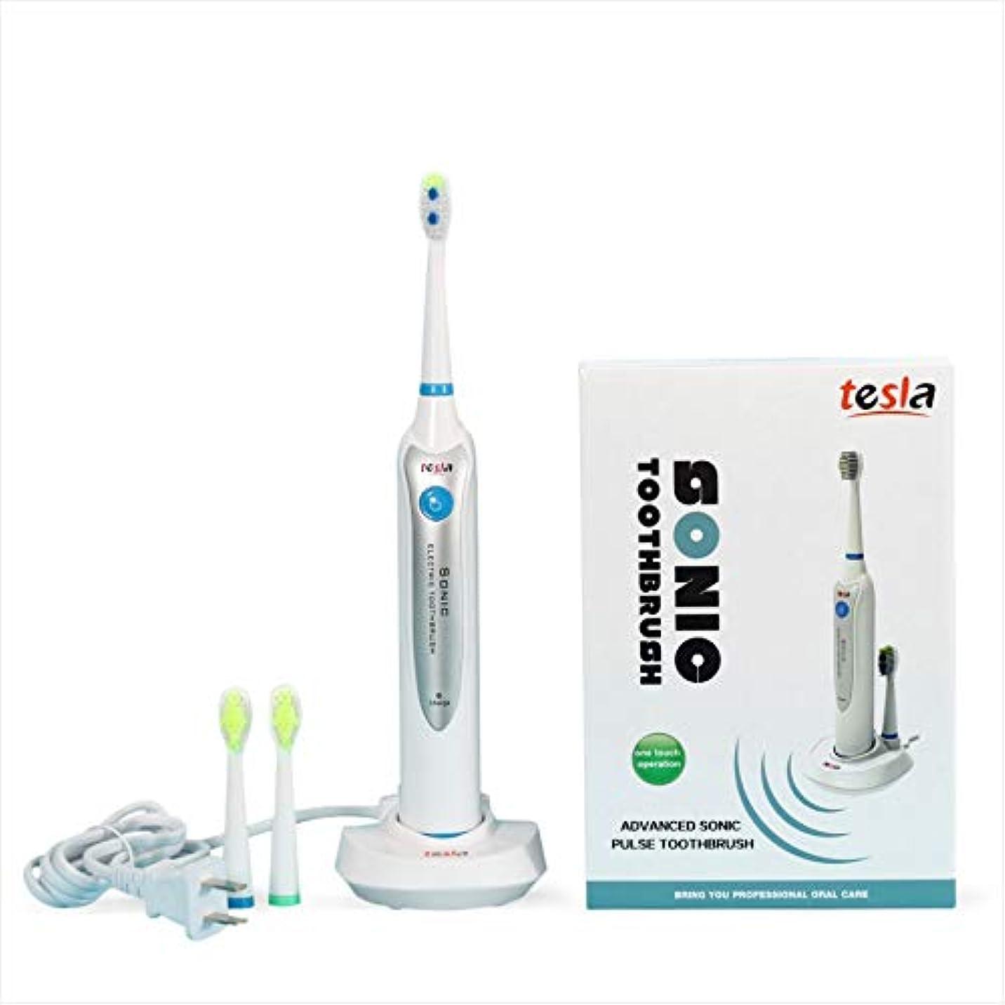 または組世界の窓ソニック電動歯ブラシバッテリー電子歯ブラシFDAガムケア衛生歯科用回転歯ブラシヘッド子供大人