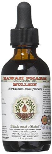 Mullein Alcohol-Free Liquid Extract, Organic Mullein (Verbascum densiflorum) Dried Flower Glycerite Natural Herbal Supplement, Hawaii Pharm, USA 2 oz