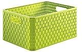 Rotho Country, Caja de almacenamiento de 18l en aspecto de ratán, Plástico PP sin BPA, verde, A4, 18l 36.8 x 27.8 x 19.1 cm