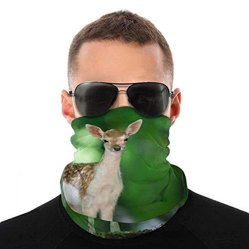 OUYouDeFangA - Diadema unisex para bebé, diseño de ciervos y vida silvestre de poliéster de secado rápido suave, para cuello, bufanda de viaje, mágico, bufanda, pañuelo para el cuello, para hombres y mujeres