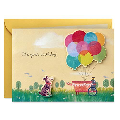 Hallmark Paper Wonder - Tarjeta de felicitación de cumpleaños (Get Carried Away)