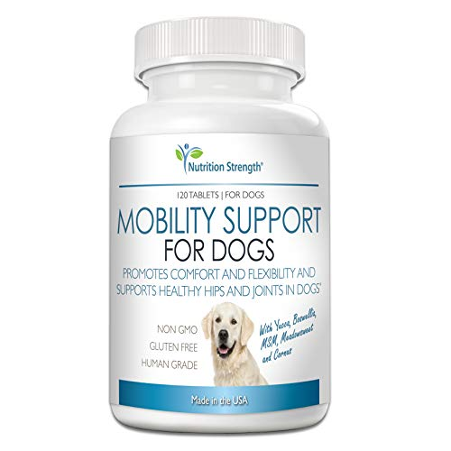 Top 10 best selling list for best supplement for back pain in dogs