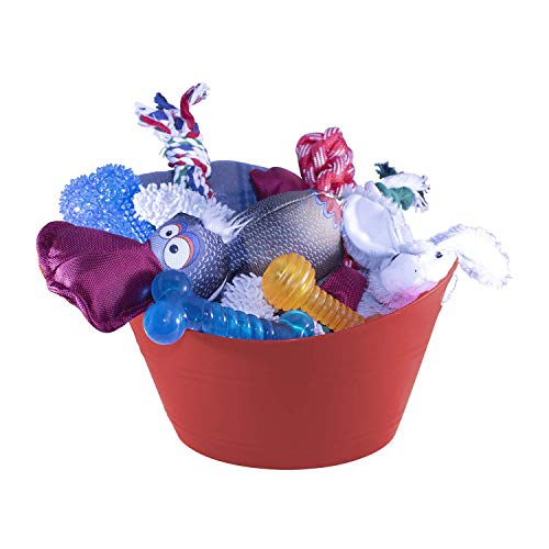 Just Chill'in Pets Holiday Dog Gift Basket