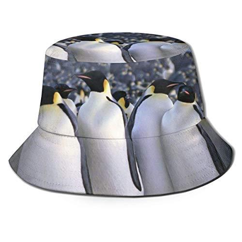 Zhengzho Flat Top atmungsaktive Eimer Hüte Kappe Unisex Kaiser Pinguin Muster Sonnenhut Sommer Fischerhut