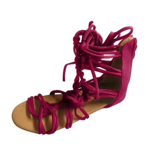 2021 Nuevo Sandalias Mujer Verano sandalias planas Gladiador Sandalias Playa Rodilla Botas Altas Chanclas para Mujer Zapatos Sandalias de Punta Vendaje Abierta Roma Sandalias Fiesta Flip flop