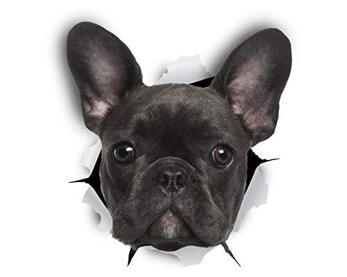 Winston & Bear 3D Hund Aufkleber - 2er-Pack - schwarz französische Bulldogge Aufkleber für Wand, Kühlschrank Frenchie Aufkleber