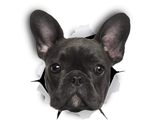Winston & Bear French Bulldog 3D Dog Stickers - 2 Pack - French Bulldog Decor - Black French Bulldog Gifts for Wall, Fridge, Toilet and More - Retail Packaged Frenchie Stickers