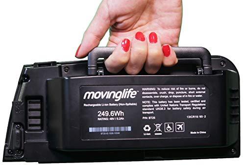 movitale ATTO Original Batterie Lithium 48 Volt lithium-ion