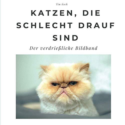 Katzen, die schlecht drauf sind: Der verdrießliche Bildband: Der verdrießliche Bildband. Sonderausgabe, verfügbar nur bei Amazon