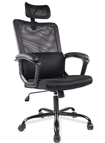 Ergonomic Office Chair Task Chair Home Desk Chair with Armrest Lumbar Support