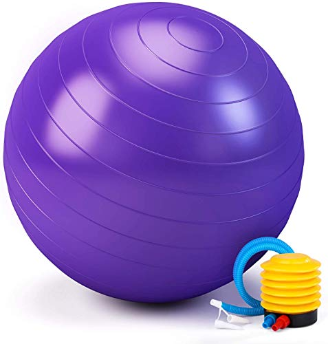 Vagalbox Pelota de Resistencia estática con Bomba para Equilibrio de Estabilidad,Profesional Resistente a La Rotura y al Deslizamiento para Yoga, Ejercicios, Cardio, Aula, Silla De Trabajo (Púrpura)