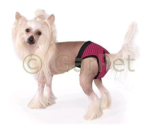 GarPet Hunde Läufigkeitshose Hygienehose Höschen Schutzhose Schutzhöschen Fun Colours (XS)