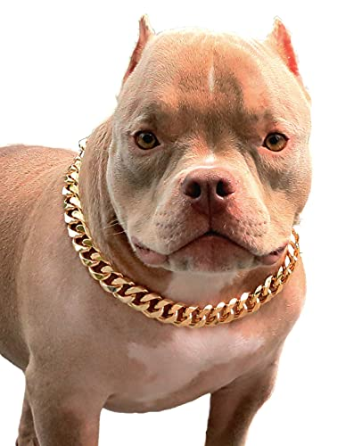 PP COLOR Gold Chain Dog Collar-3/4 Width Cuban Link Dog Necklace, Cute Fashion Pet Collar for Pit Bulldog, Light Metal Jewelry Chain Puppy Accessories 20'