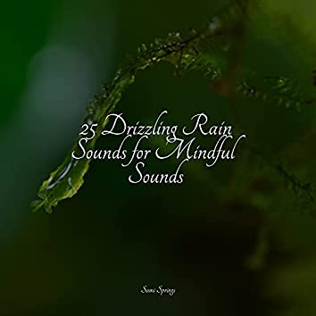 25 Drizzling Rain Sounds for Mindful Sounds