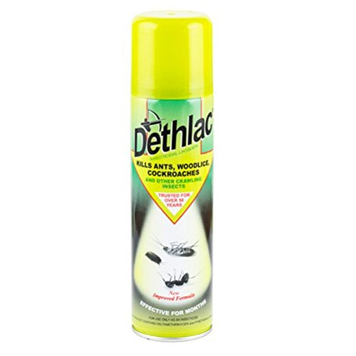 Dethlac 250 ml Insecticidal Lacquer (Kills Insects such as Ants, Woodlice...