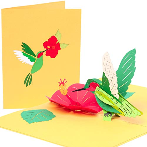 PopLife Hummingbird and Hibiscus 3D Pop Up Mother's Day Card - Happy Anniversary, Flower Birthday Card for Mom, Valentine's Day Card for Her, Thank You, Get Well - for Sister, Daughter, Grandma, Wife