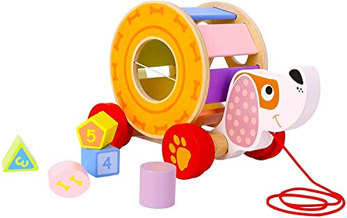 Pidoko Kids Pull Along Dog Puppy - Walking Toys with Shape Sorter - Toys for 18 Months Old Boys and Girls Gifts