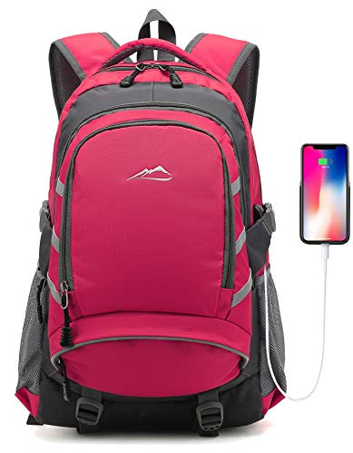Backpack for School College Student Travel Business Bookbag with USB Charging Port Fit 15.6 inch Laptop Night Light Reflective Chest Luggage Straps(Pink)