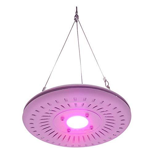 LINGPE - Planta Grow Box LED lámpara Puerta Interior