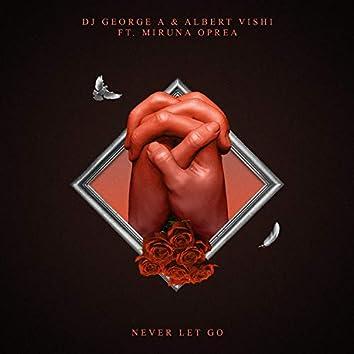 Never Let Go (feat. Miruna Oprea & Albert Vishi)