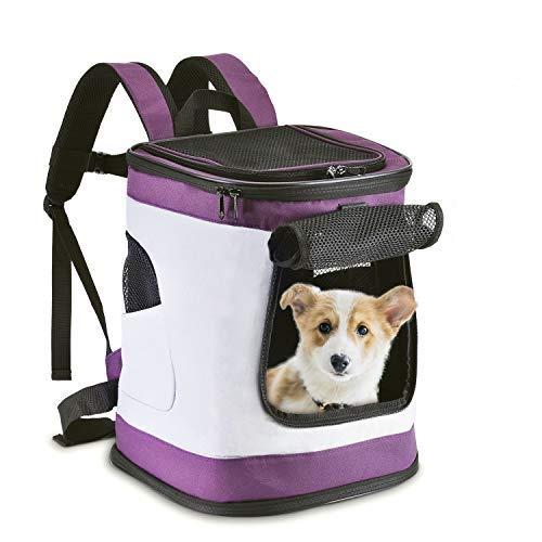 HAPPY HACHI Faltbar Weich Haustier Rucksack Rückenspritze Haustier Gepäckträger für Kartze Hunde mit einstellbar Polsterstuhl Schulter Gewebe Top-Openning Öffnung bis zu 10kg (Lila)