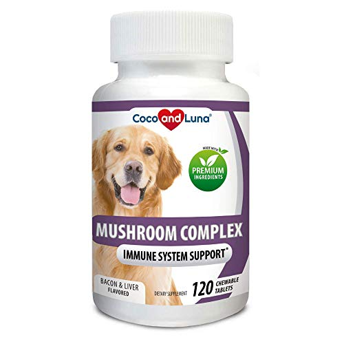 Mushroom Complex for Dogs - Immune Support for Dogs, Digestive Support, Dog Hip and Joint Health - with Turkey Tail, Lion's Mane, Shiitake, Maitake, Milk Thistle + Vitamins - 120 Chew-able Tablets