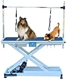 Heavy Duty Super-Low Electric Lift Dog Grooming Table with Overhead Arm, Clamps, Two Grooming Noose