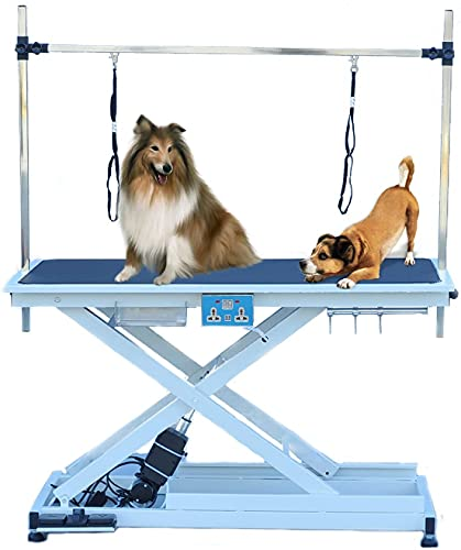 Heavy Duty Super-Low Electric Lift Dog Grooming Table with Overhead...