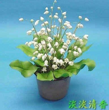 SwansGreen 50 Pcs lirio de las semillas Valle Flor de interior raras...