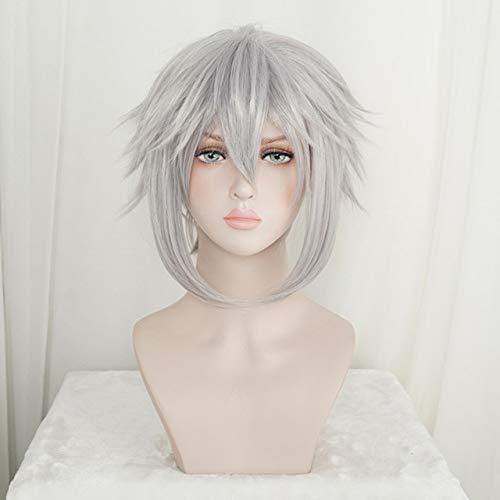 Kingdom Hearts III Riku Iron- Grey Peluca corta Cosplay Disfraz Hombres Mujeres Pelucas de pelo sinttico resistente al calor + Tapa de pelucacomo la imagen