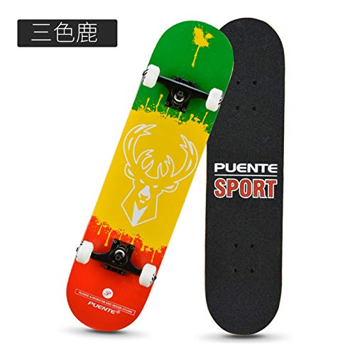 Bidema Skateboard de Cuatro Ruedas Doble-Roller Road Adult Children's Shake Shake Scooter Hervir Power Foot Woven Fila Versión Diamante Papel de Lija (Color : C)