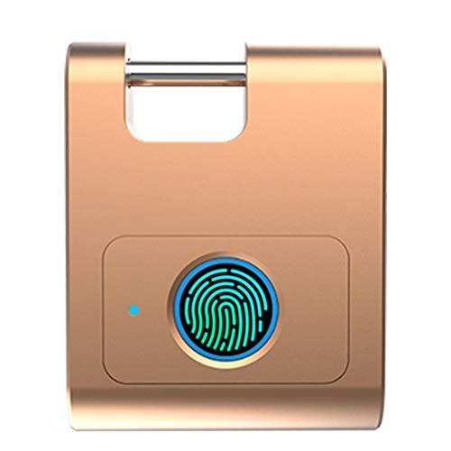 Tragbar Intelligentes Vorhängeschloss IP65 Wasserdichter Smart Fingerprint Lock für die Aufnahme von 10 Fingerabdrücken, geeignet für Haustür, Koffer, Rucksack, Fitnessraum, Fahrrad Smart, A