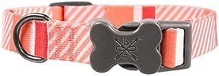 Bow & Arrow Colorful Stripe Adjustable Dog Collar