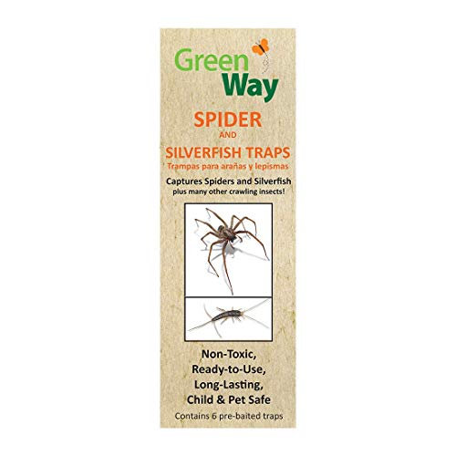 GreenWay Spider & Silverfish Trap - 6 prebaited Traps | Ready to Use Heavy Duty Glue, Safe, Non-Toxic with No Insecticides or Odor, Eco Friendly, Kid and Pet Safe