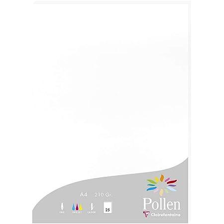 Clairefontaine 24239C - Un étui de 25 feuilles Pollen 21x29,7 cm 210g, Blanc