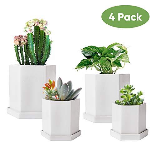 Hexagonal Flower Pots,Succulent Pots with Drinage Hole, Hexagonal Indoor Planter Pots with Tray,White Cactus Planters,Ceramic Garden Pots Set of 4